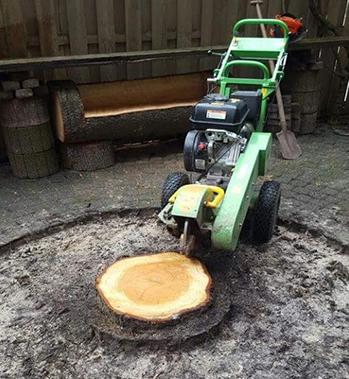 Gespecialiseerd in verwijderen boomstronken