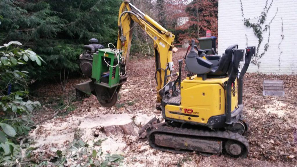boomstronk verwijderen in Alpen aan den rijn in tuin