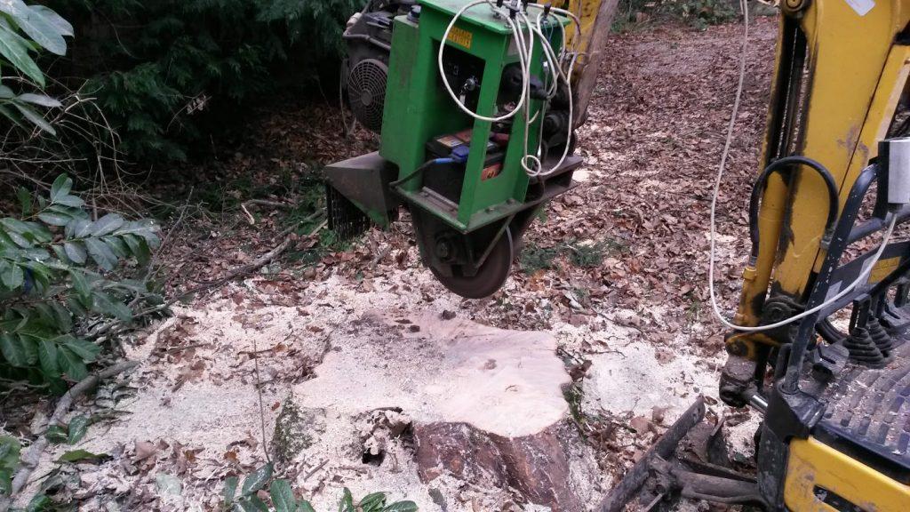 Gespecialiseerd in verwijderen boomstronken met stobbenfrees
