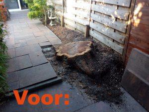 boomstronk verwijderen voor resultaat